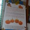 Halloween w BSP