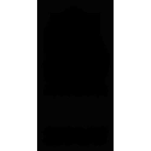Bielska Szkoła Przemysłowa